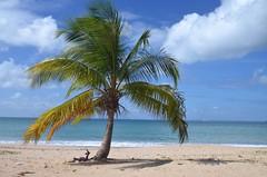beachday...