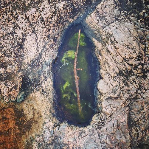 Wand + Water + Earth