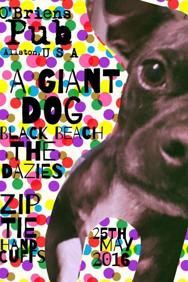 A Giant Dog, Black Beach, Zip-Tie Handcuffs, The Dazies | O'Brien's Pub | 25 May