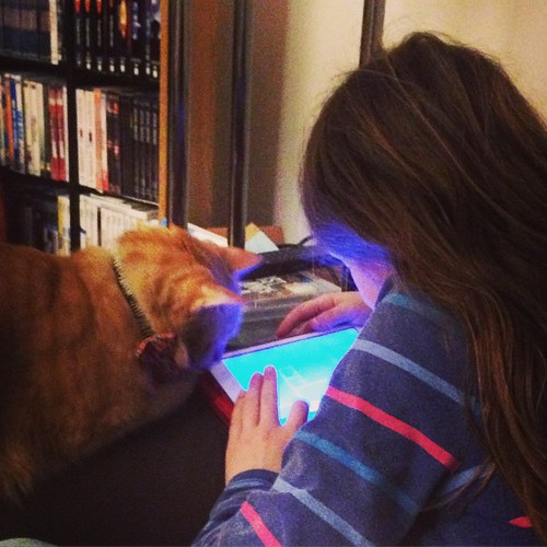 Beso and his girl play Geometry Dash #cats #catsofinstagram #foodcatspens