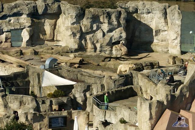 Zoo am Meer 08.03.2015  158