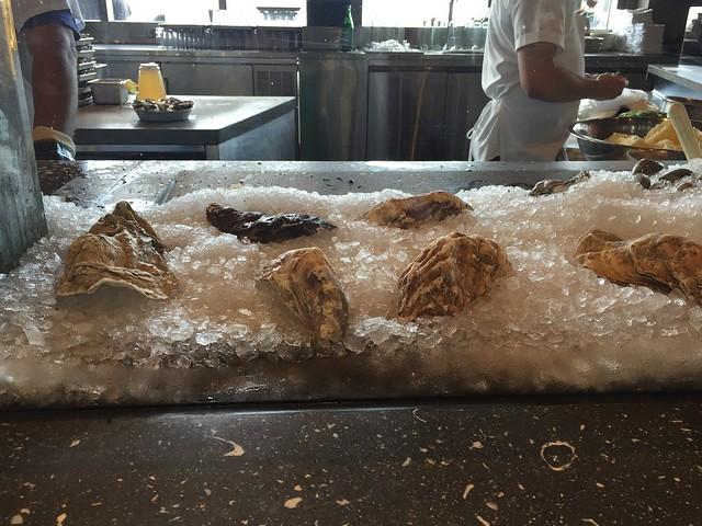 Oyster bar at Hog Island Oyster