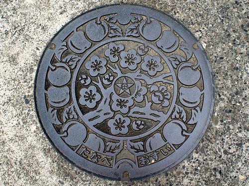 Tanabe Wakayama, manhole cover 2 (和歌山県田辺市のマンホール2)