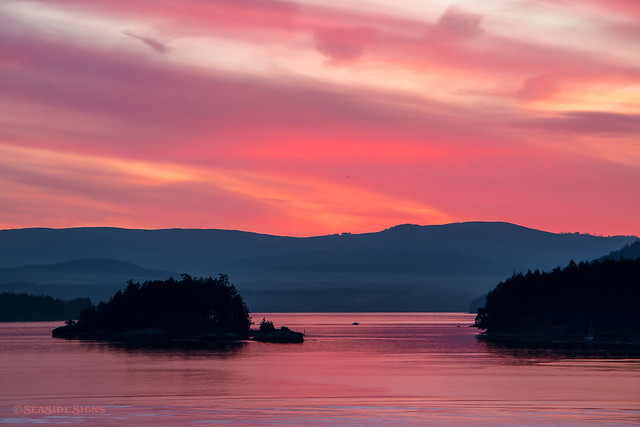 Salmon Skies ~ Gulf Islands, BC