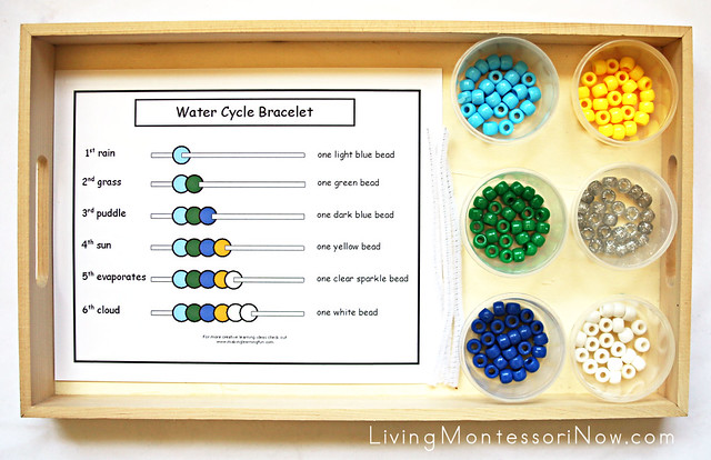 Water Cycle BraceletTray