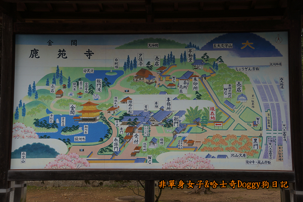 日本京都金閣寺09