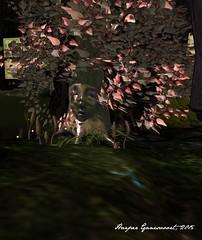 Fantasy Faire 2015 -- Tangleshimmer Grove 2