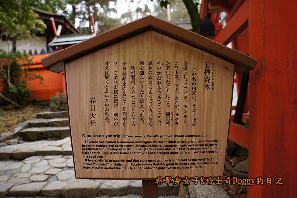 日本奈良春日大社20