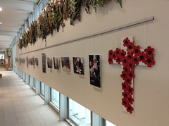 Rannerdale Veterans' Home Display at Upper Riccarton Library