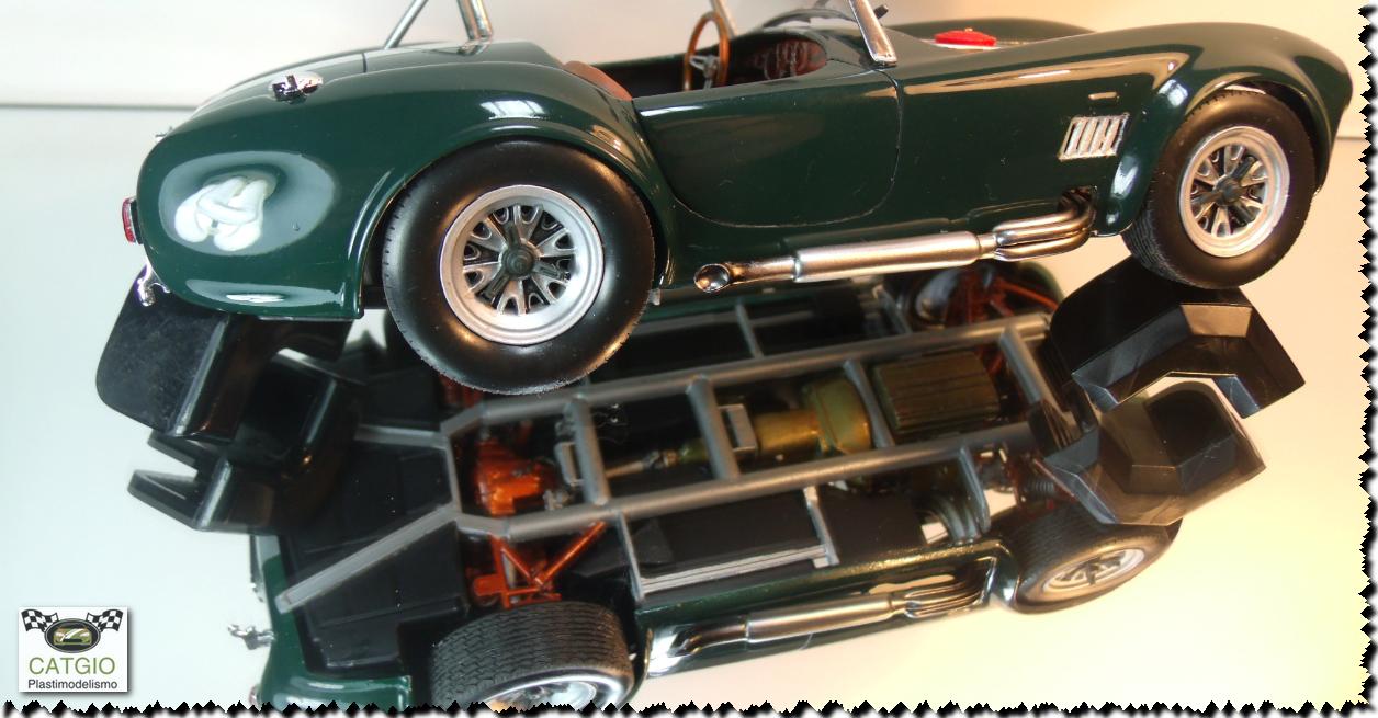Shelby Cobra S/C - Revell - 01/24 - Finalizado 24/04 - Página 2 17043657337_cdbf51c04b_o