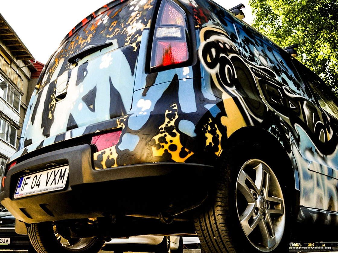 01-20120619-graff_my_car_burn_campaign-timisoara-grafformers_ro