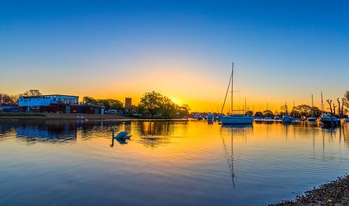 sunrise boat swan riverstour christchurchdorset