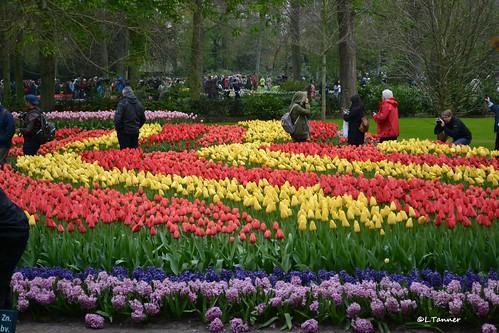 Keukenhof Frühlingspark