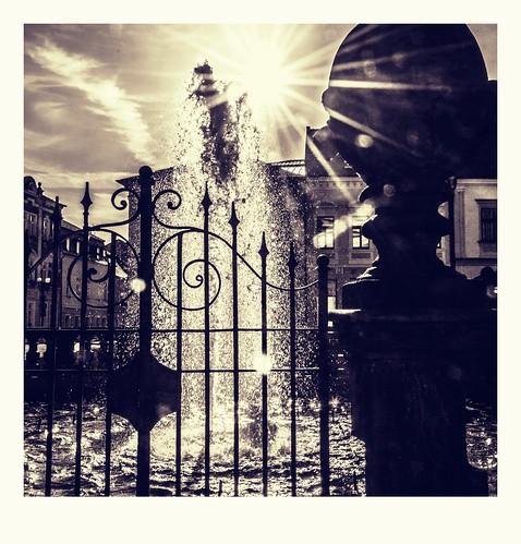 sun bathing in the fountain