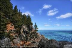 Cutler Coast - Maine