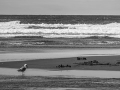 Seaside Oregon - June 2016 3