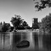 Falmer Pond by André Jardinière