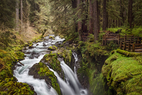 olympic olympicnationalpark olympicpeninsula solduc solducwaterfall soleduck usa unitedstates washington forest landscape nationalpark outdoor rainforest temperate water waterfall