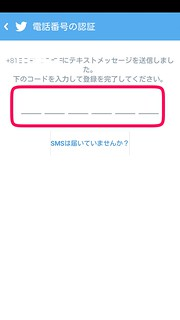 Twitter アプリ PINコード手動入力