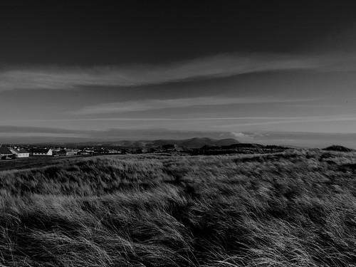 blackandwhite monochrome field grass landscape