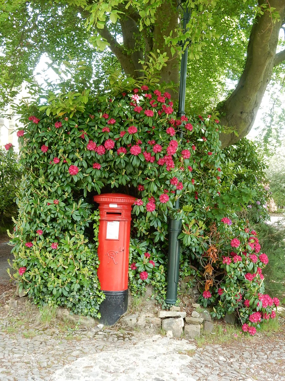 Postbox, Calverley Park Tunbridge Wells Circular