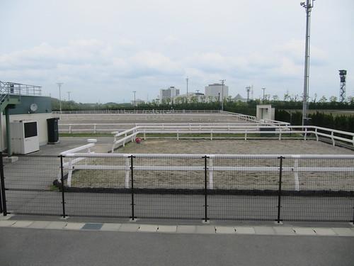 中京競馬場の乗馬センター