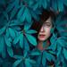 blue jungle by anka_zhuravleva