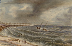 Pacific, schooner; rescue of crew by Thomas Tinning; looking south-east from shore near High Park.