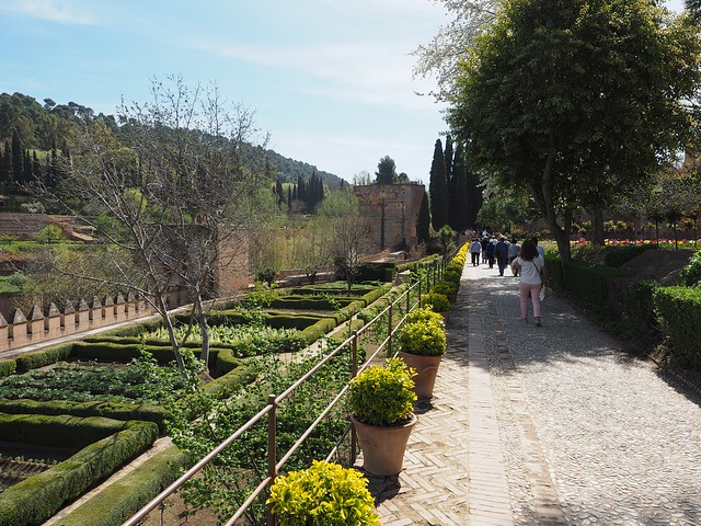 359 - Alhambra