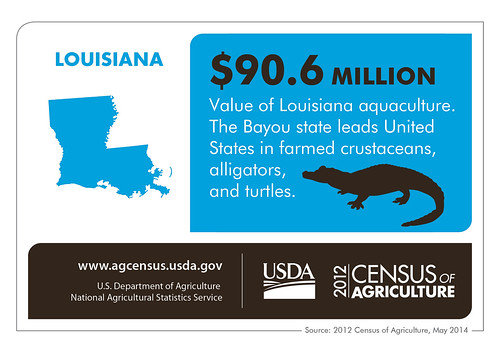 It's not surprising, but the Bayou State leads the nation in several aquaculture categories.  Be sure to check back next week for more fun facts from the 2012 Census of Agriculture.