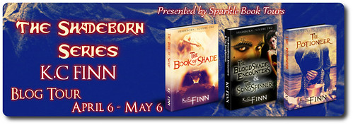 Shadeborn tour banner