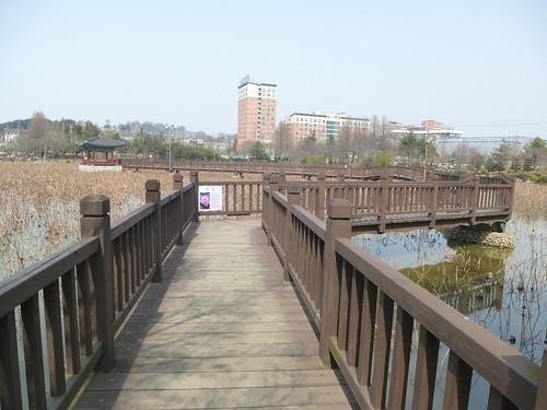 Co-Jeonju-Parc Deokjin (10)