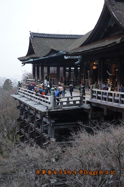 日本京都清水寺18