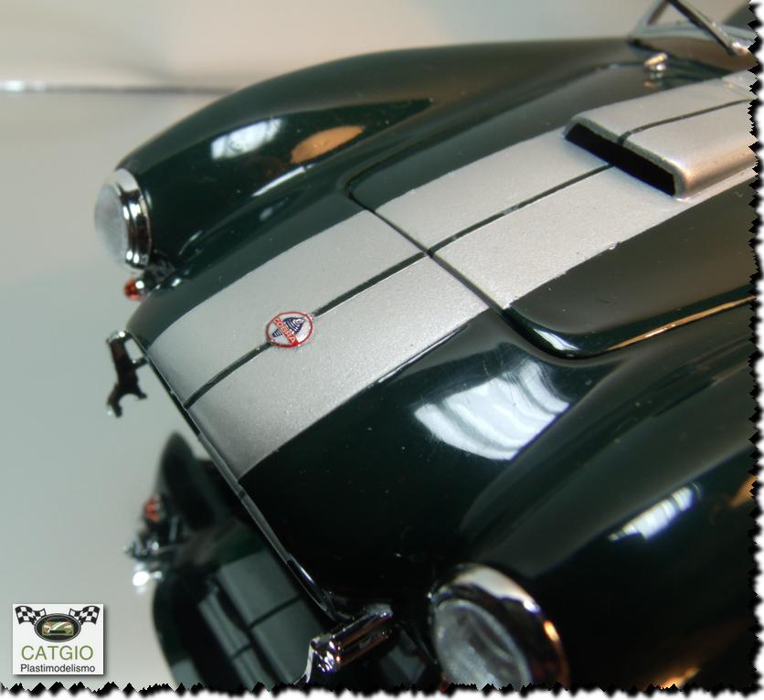 Shelby Cobra S/C - Revell - 01/24 - Finalizado 24/04 - Página 2 17249274402_b08c4bfd46_o