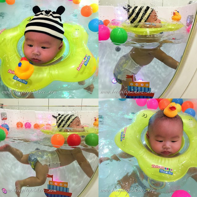 hippopobaby