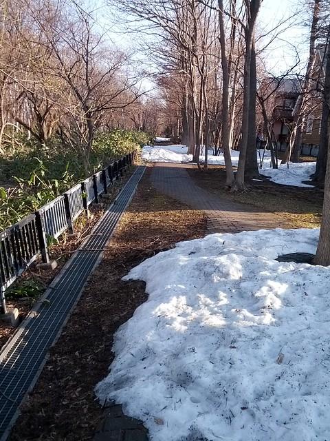 雪解け初散歩道