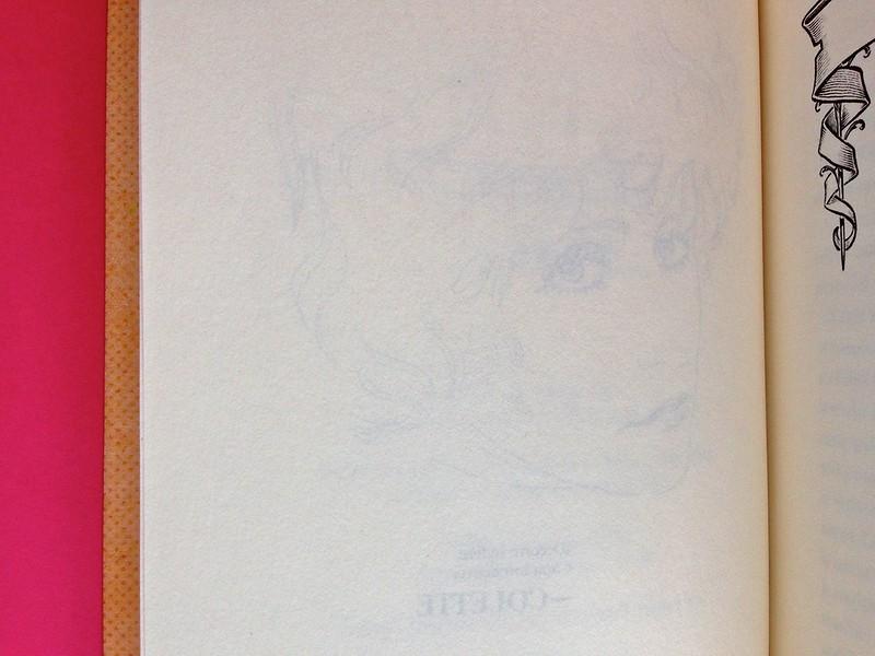 La stella del vespro, di Colette. Del Vecchio Editore 2015. Art direction, cover, illustrazioni, logo design: IFIX | Maurizio Ceccato. Verso di pag. 6 e frontespizio, a pag. 7 (part.), 1