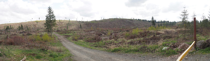 Burnett Mines Hills 1