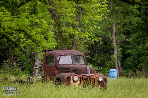 old abandoned nature truck georgia rust unitedstates rusty rusted wrightsville abandonedtruck rustedtruck treutlencounty thesussman sonyslta77 sussmanimaging