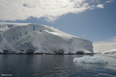 Glacier Cliff
