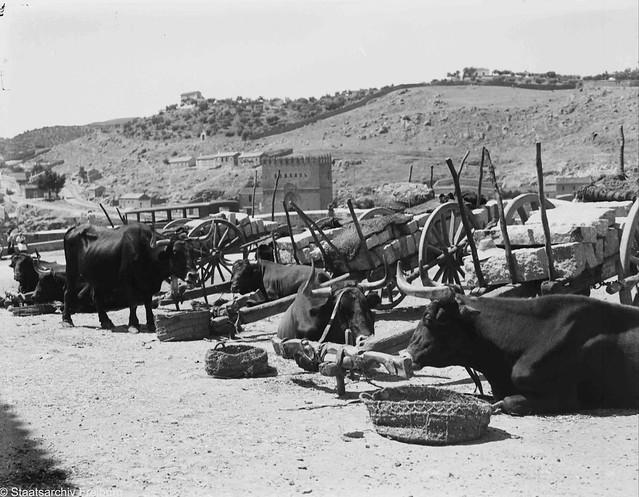 1932 Bueyes junto al Puente de San Martin (foto Pragher)