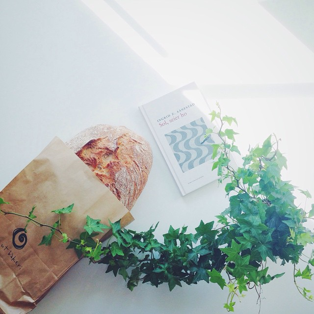 eg tok ein times pause og kjøpte brød på @åpentbakeri, lånte mi første bok på eit halvt år og kjøpte eføy til kjøkenet. så varmt ute at eg kan ikkje tru det.🌿☀️