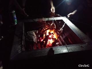 CIRCLEG 等埋我先玩喎 回歸原點 繪圖 新都城 MCP 小熊 東港城 海洋公園 樹熊 袋鼠 貓CAFE 南灣 玩在棋中 BOARDGAME 香香雞 (33)