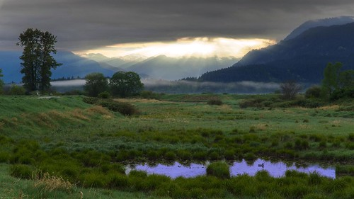 mountain canada clouds sunrise landscape nikon bc britishcolumbia wildlife meadow wideangle wetlands marsh dslr mapleridge goldenears jerrysulinapark d7000