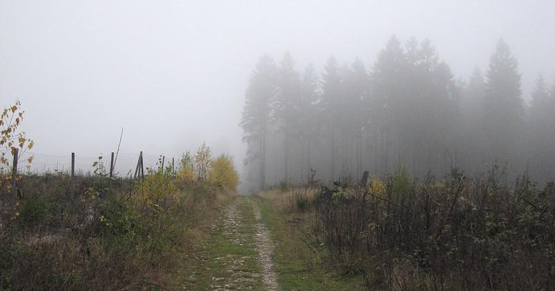 Autumn Mood 9