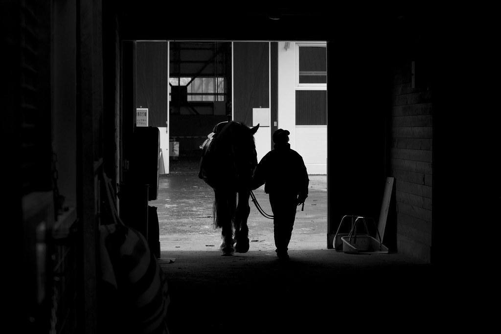 馬小屋 - stable