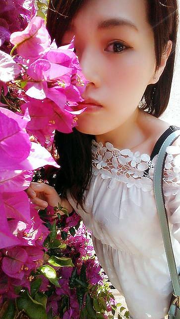 花 (11)