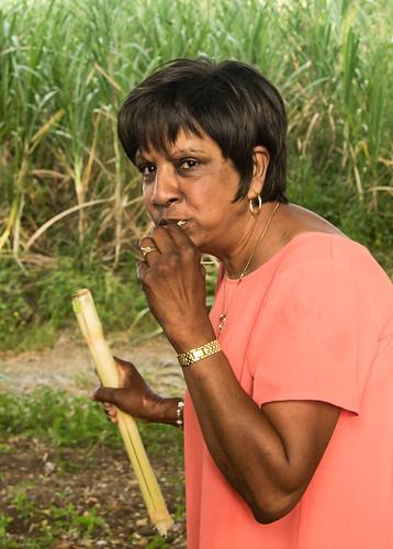 1785 1785mm 7dmarkii 7d2 ba canon efs1785 eos fiji fijiislands mba rarawai vitilevu sugar sugarcane shamina samina shaminastewart apsc canon7dmarkii efs1785mmf456isusm unlimitedphotos shameena