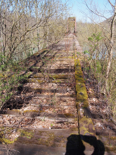 Monongahela Railway Trestle at Pricketts Fort (18)