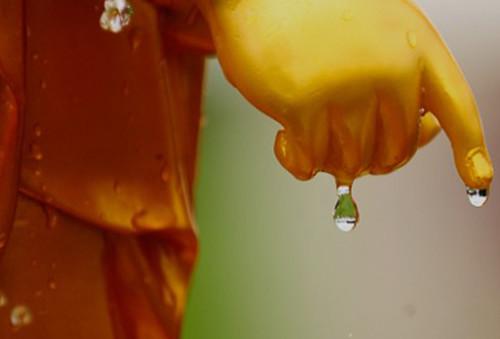 Duyên nợ và Lời Phật Dạy trong tình yêu đáng suy ngẫm